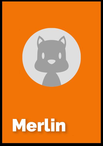 smarteins Team Merlin